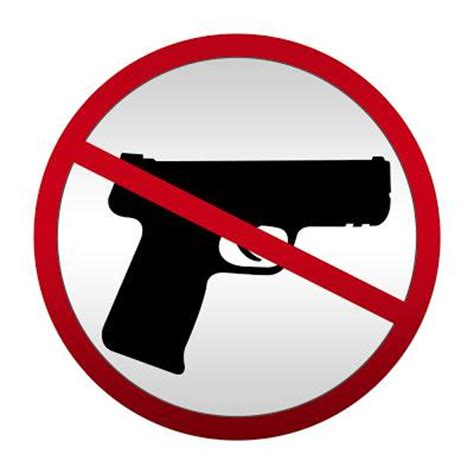 Gun Control Essay - Essay Topics